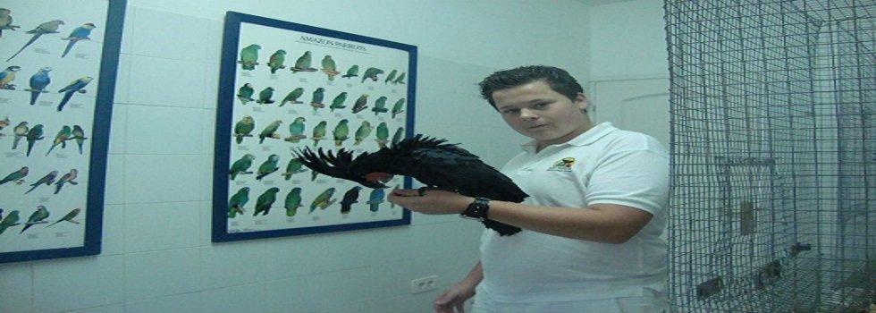 BirdTrade